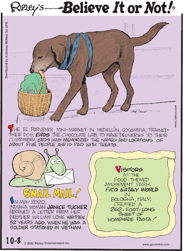 1. The El Porvenir mini-market in Medellín, Colombia, trained their dog, Eros the chocolate lab, to make deliveries to their customers, Eros has memorized the names and locations of about five people and is paid with treats. 2. Snail Mail! In May 2020, Indiana woman Janice Tucker received a letter from her brother William Lone written 52 years ago, when he was a soldier stationed in Vietnam. 3. Visitors at the food-themed amusement park Fico Eataly World in Bologna, Italy, created a 262-foot-long sheet of homemade pasta!