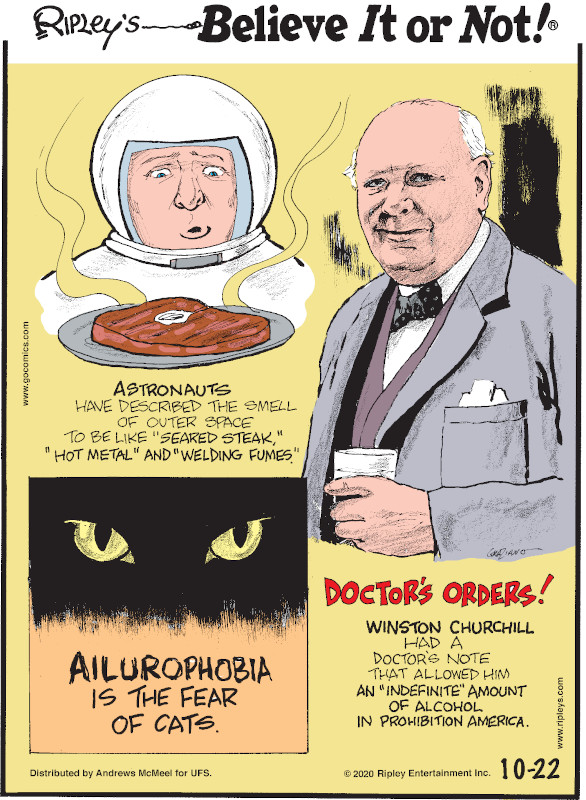 """1. Astronauts have described the smell of outer space to be like """"seared steak,"""" """"hot metal"""" and """"welding fumes."""" 2. Ailurophobia is the fear of cats. 3. Doctor's Orders! Winston Churchill had a doctor's note that allowed him an """"indefinite"""" amount of alcohol in prohibition America."""