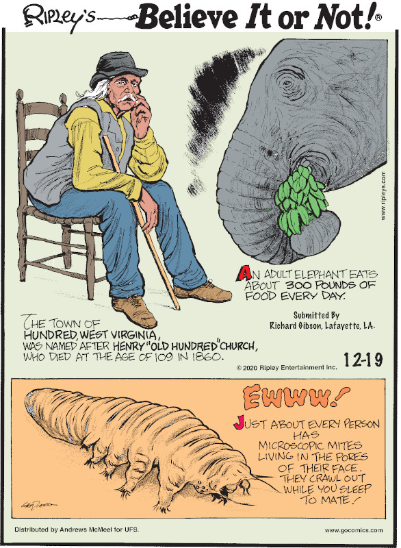 """1. The town of Hundred, West Virginia, was named after Henry """"Old Hundred"""" Church, who died at the age of 109 in 1860. 2. An adult elephant eats about 300 pounds of food every day. Submitted by Richard Gibson, Lafayette, LA. 3. Ewww! Just about every person has microscopic mites living in the pores of their face. They crawl out while you sleep to mate!"""
