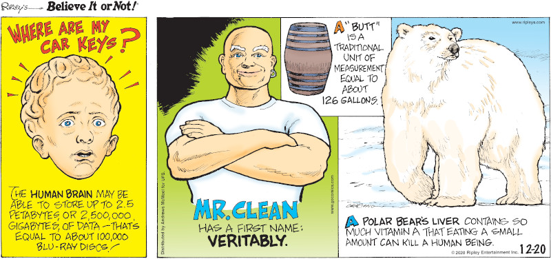 """1. Where Are My Car Keys? The human brain may be able to store up to 2.5 petabytes or 2,500,000 gigabytes of data - that's equal to about 100,000 blu-ray discs! 2. Mr. Clean has a first name: Veritably. 3. A """"butt"""" is a traditional unit of measurement equal to about 126 gallons. 4. A polar bear's liver contains so much vitamin A that eating a small amount can kill a human being."""