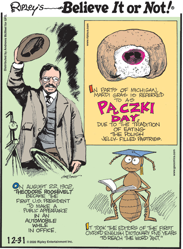 """1. In parts of Michigan, Mardi Gras is referred to as Pączki Day, due to the tradition of eating the Polish jelly-filled pastries. 2. On August 22, 1902, Theodore Roosevelt became the first U.S. President to make a public appearance in an automobile while in office. 3. It took the editors of the first Oxford English Dictionary five years to reach the word """"ant."""""""