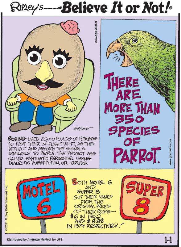 1. Boeing used 20,000 pounds of potatoes to test their in-flight Wi-Fi, as they reflect and absorb the signals similarly to people. The project was called Synthetic Personnel Using Dialectic Substitution, or SPUDS. 2. There are more than 350 species of parrot. 3. Both Motel 6 and Super 8 got their names from the original prices of their rooms - $6 in 1962 and $8.88 in 1974 respectively!