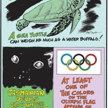 1. A sea turtle can weigh as much as a water buffalo! 2. Tasmanian devils glow under fluorescent light! 3. At least one of the colors on the Olympic flag appears on every country's flag.