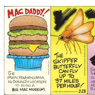 """1. Carrots are actually bad for rabbits. Submitted by Richard Gibson, Lafayette, LA. 2. Mac Daddy! The Irwin, Pennsylvania, McDonald's location is also a Bic Mac museum. 3. The skipper butterfly can fly up to 37 miles per hour! 4. The current person third in the line of U.S. presidential succession, Senator Patrick Leahy, has been in five """"Batman"""" movies - more than any actor who has played the caped crusader!"""