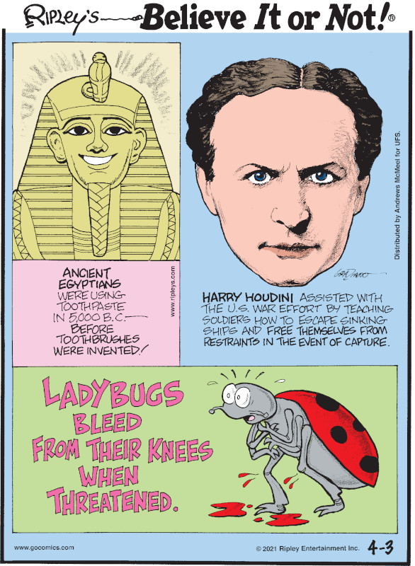 1. Ancient Egyptians were using toothpaste in 5,000 B.C. - before toothbrushes were invented! 2. Harry Houdini assisted with the U.S. war effort by teaching soldiers how to escape sinking ships and free themselves from restraints in the event of capture. 3. Ladybugs bleed from their knees when threatened.