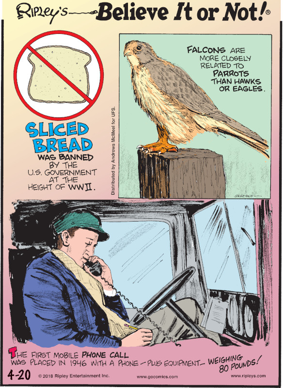 1. Sliced bread was banned by the U.S. government at the height of WWII. 2. Falcons are more closely related to parrots than hawks or eagles. 3. The first mobile phone call was placed in 1946 with a phone - plus equipment - weighing 80 pounds!