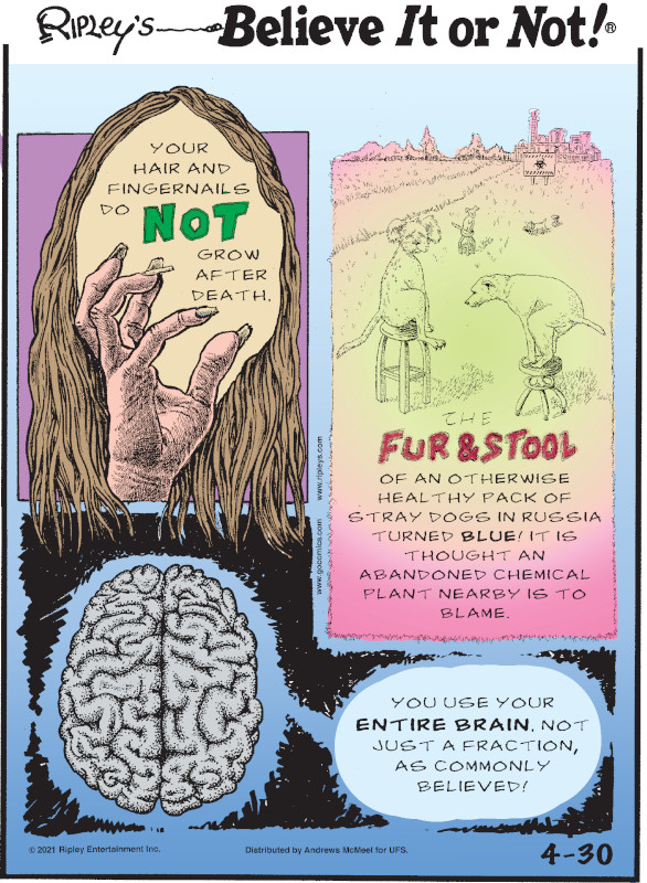 1. Your hair and fingernails do not grow after death. 2. The fur & stool of an otherwise healthy pack of stray dogs in Russia turned blue! It is thought an abandoned chemical plant nearby is to blame. 3. You use your entire brain, not just a fraction, as commonly believed!