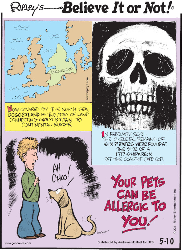 1. Now covered by the North Sea, Doggerland is the area of land connecting Great Britain to Continental Europe. 2. In February 2021, the skeletal remains of six pirates were found at the site of a 1717 shipwreck off the coast of Cape Cod. 3. Your pets can be allergic to you!