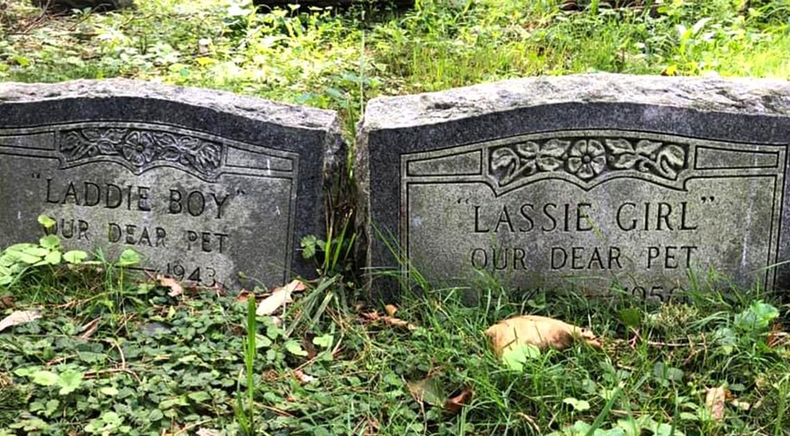 Pet Cemetery Headstones