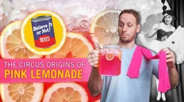 Pink Lemonade Believe It or Not! Bites
