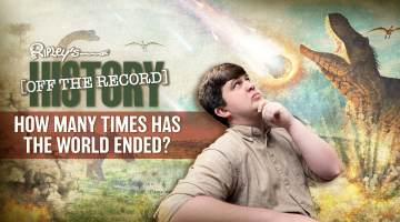 Extinction Events