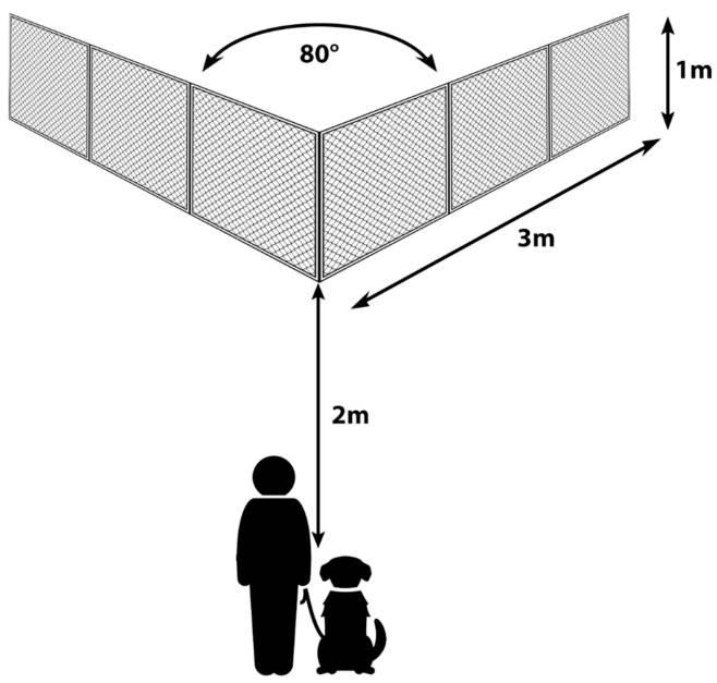 V-Shaped Dog Diagram