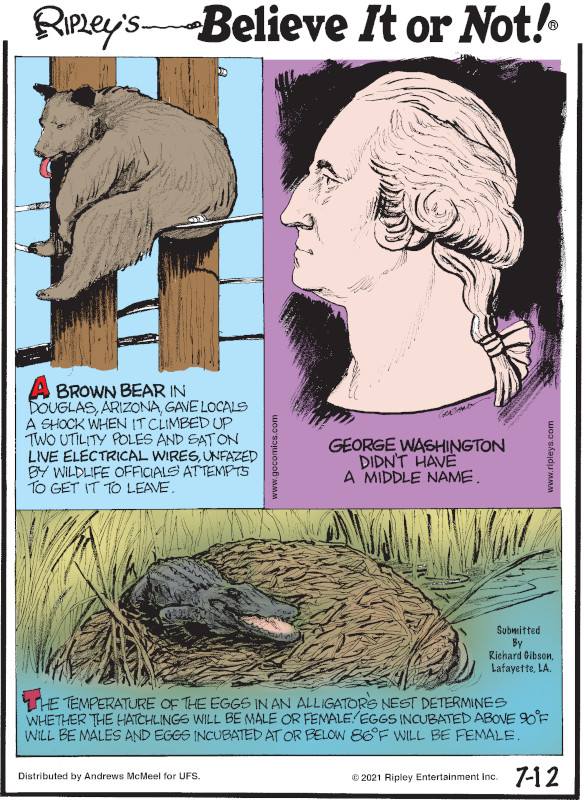 1. A brown bear in Douglas, Arizona, gave locals a shock when it climbed up two utility poles and sat on live electrical wires, unfazed by wildlife officials' attempts to get it to leave. 2. George Washington didn't have a middle name. 3. The temperature of the eggs in an alligator's nest determines whether the hatchlings will be male or female! Eggs incubated above 90°F will be males and eggs incubated at or below 86°F will be female.