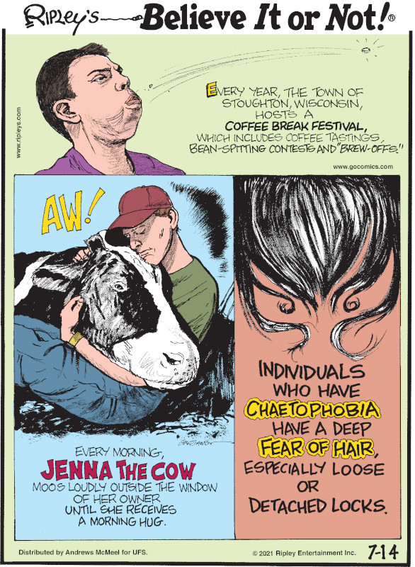 """1. Every year, the town of Stoughton, Wisconsin, hosts a Coffee Break Festival, which includes coffee tastings, bean-spitting contests and """"brew-offs."""" 2. every morning, Jenna the cow moos loudly outside the window of her owner until she receives a morning hug. 3. Individuals who have chaetophobia have a deep fear of hair, especially loose or detached locks."""