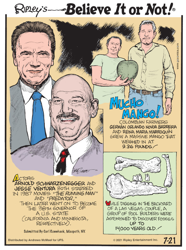 """1. Actors Arnold Schwarzenegger and Jesse Venture both starred in 1987 movies """"The Running Man"""" and """"Predator,"""" then later went on to become the 38th governor of a U.S. state (California and Minnesota, respectively). Submitted by Carl Rennhack, Maspeth, NY. 2. Mucho Mango! Colombian farmers Germán Orlando Novoa Barrera and Reina Maria Marroquín grew a massive mango that weighed in at 9.36 pounds! 3. While digging in the backyard of a Las Vegas couple, a group of pool builders were astonished to discover fossils up to 14,000 years old!"""