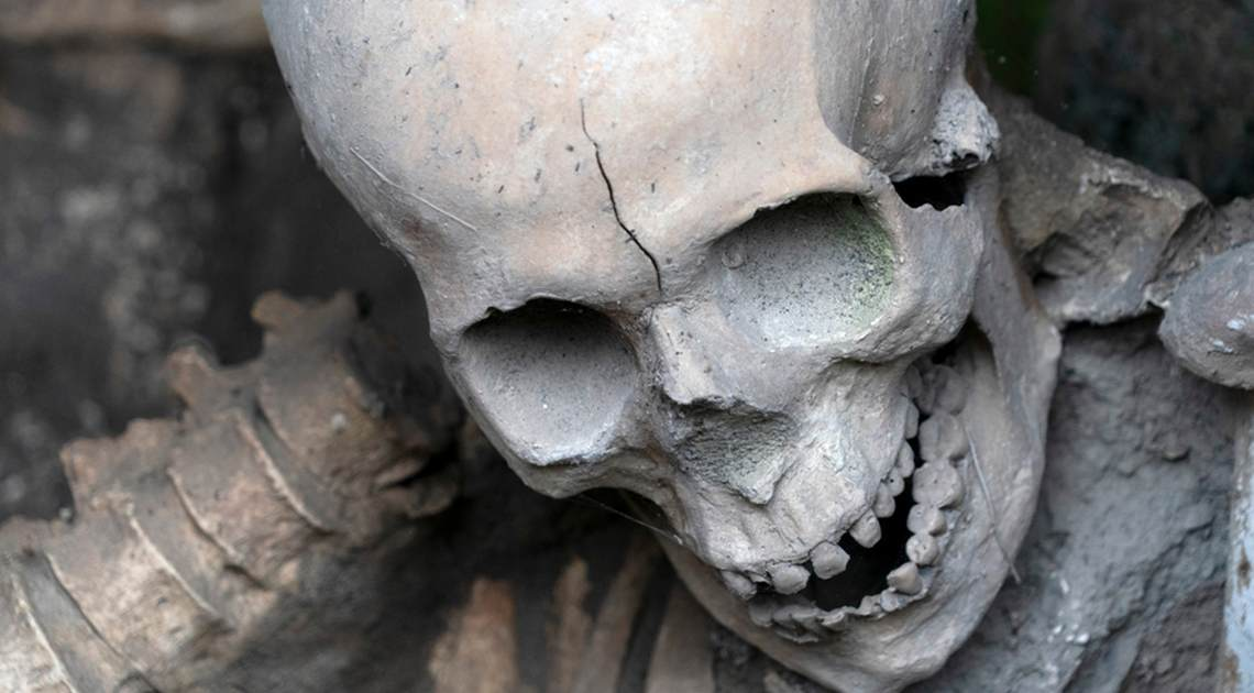 Glass Brains Skeleton Cover