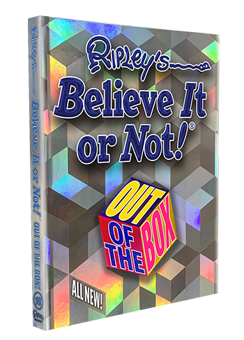 Out of the Box Book Cover