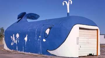 Whale Car Wash