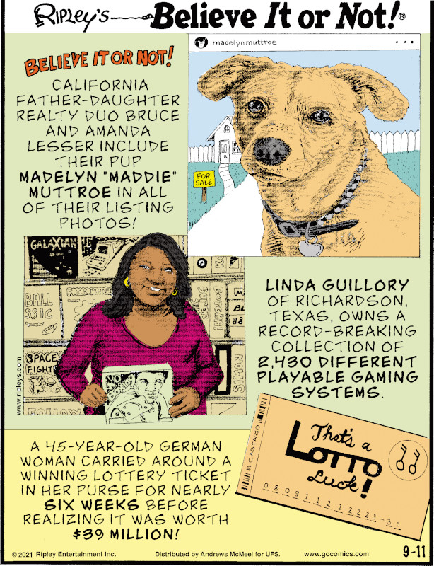"""1. California father-daughter realty duo Bruce and Amanda Lesser include their pup Madelyn """"Maddie"""" Muttroe in all of their listing photos! 2. Linda Guillory of Richardson, Texas, owns a record-breaking collection of 2,430 different playable gaming systems. 3. A 45-year-old German woman carried around a winning lottery ticket in her purse for nearly six weeks before realizing it was worth $39 million!"""