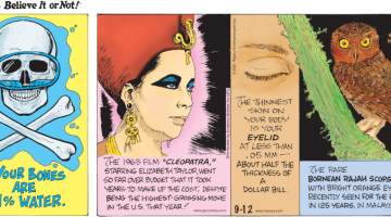 """1. Your bones are 31% water. 2. The 1963 film """"Cleopatra,"""" starring Elizabeth Taylor, went so far over budget that it took years to make up the cost, despite being the highest-grossing movie in the U.S. that year! 3. The thinnest skin on your body is your eyelid at less than .05 mm - about half the thickness of a dollar bill. 4. The rare Bornean Rajah scops owl with bright orange eyes was recently seen for the first time in 125 years, in Malaysia."""