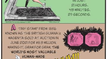 1. On July 26, 2021, athlete and amputee Amy Palmiero-Winters of New York ran 100 miles on a treadmill in just 21 hours, 43 minutes, 29 seconds. 2. A tiny stamp from 1856 known as the British Guiana 1¢ magenta sold at auction in June 2021 for $8.3 million, making it, gram for gram, the world's most valuable human-made object. 3. In April 2021, a Qatar-bound passenger plane had to make an emergency landing in Sudan after a stowaway cat attacked the pilot!