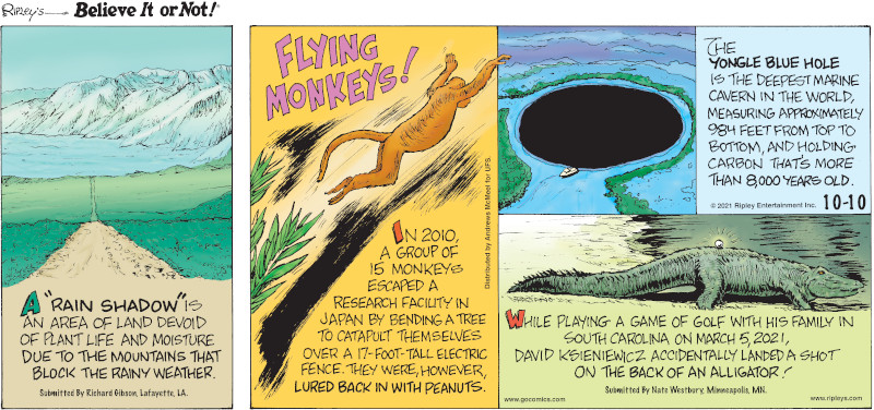 """1. A """"rain shadow"""" is an area of land devoid of plant life and moisture due to the mountains that block the rainy weather. Submitted by Richard Gibson, Lafayette, LA. 2. Flying Monkeys! In 2010, a group of 15 monkeys escaped a research facility in Japan by bending a tree to catapult themselves over a 17-foot-tall electric fence. They were, however, lured back in with peanuts. 3. The Yongle Blue Hole is the deepest marine cavern in the world, measuring approximately 984 feet from top to bottom, and holding carbon that's more than 8,000 years old. 4. While playing a game of golf with his family in South Carolina on March 5, 2021, David Ksieniewicz accidentally landed a shot on the back of an alligator! Submitted by Nate Westbury, Minneapolis, MN."""