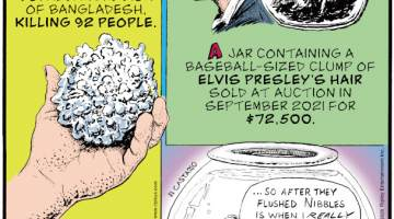 1. On April 14, 1986, grapefruit-sized hailstones weighing more than two pounds apiece showered down on the Gopalganj region of Bangladesh, killing 92 people. 2. A jar containing a baseball-sized clump of Elvis Presley's hair sold at auction in September 2021 for $72,500. 3. Goldfish can distinguish the music of different composers.