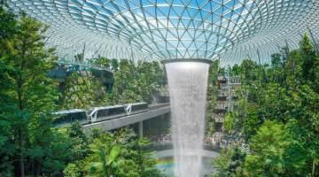 Airport Rainforest